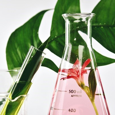 Multiple-plant-extracts-01